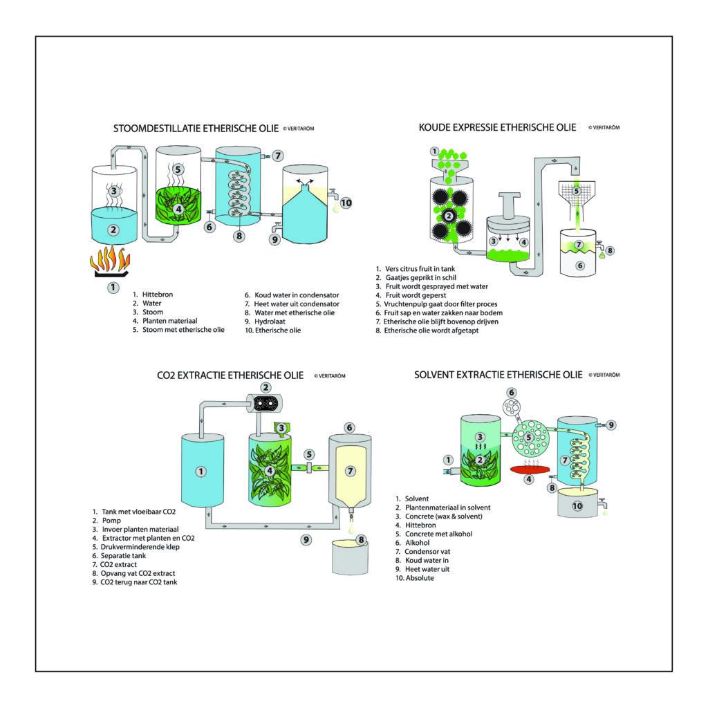 extractie methodes etherische oliën