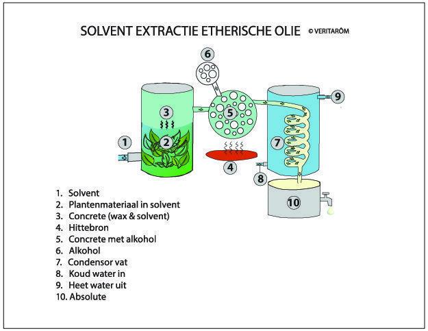 solvent extractie etherische olie uitleg